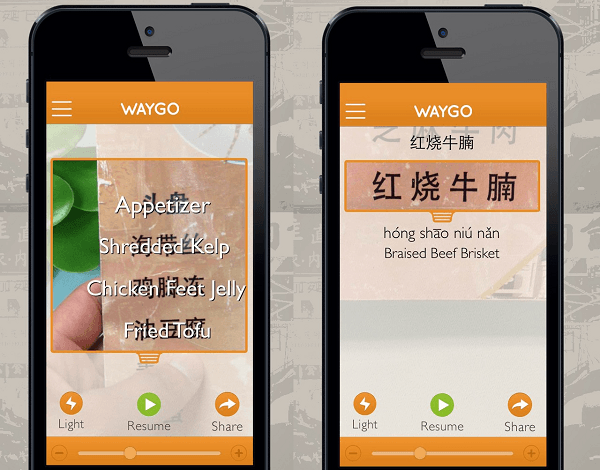 waygo-1