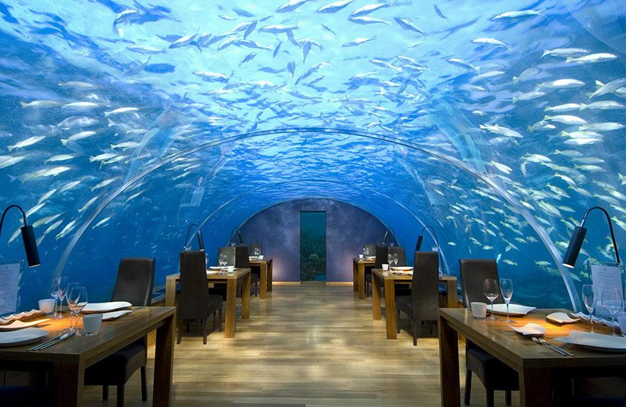 worlds-most-amazing-restaurants-unique-dining-experiences-4-57e51f07a7707__880